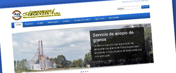 Sitio web Agrocereales Argentina SRL